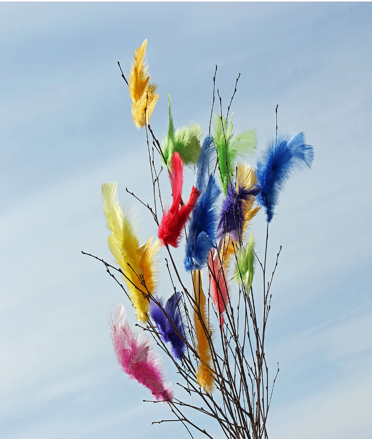 Bild på fjädrar i färgerna gult, rött, rosa, grönt och blått